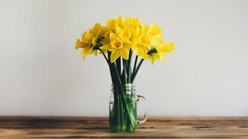 Gli eventi della primavera!